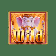 ganesha-fortune_1x1_wild