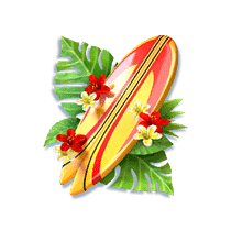 bikini paradise h surfboard