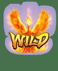 phoenix rises s wild en
