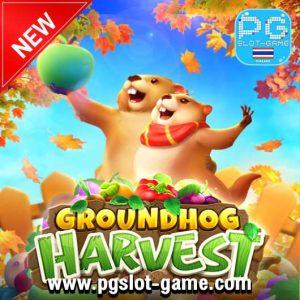 Groundhog Harvest Banner